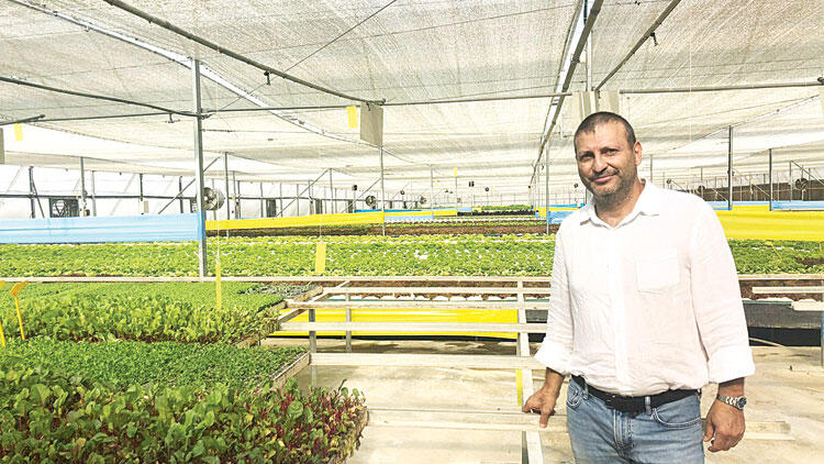 Turkey: Grower in Izmir grows vegetables through hydroponic production with 1 million USD investment